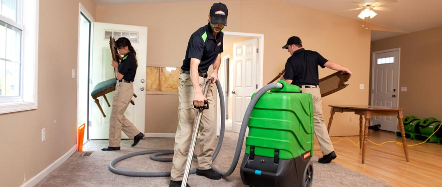 Chaska, MN cleaning services